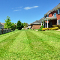 the-yard-cutting-businesses-in-Arlington-TN