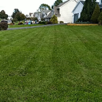 affordable-landscaping-maintenance-services-in-Philadelphia-PA