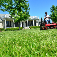 local-lawn-maintenance-contractors-in-Des Moines-IA