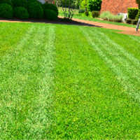 lawn-maintenance-in-Beaverton-OR