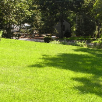 lawn-maintenance-in-Greenfield-WI