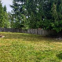 the-yard-cutting-businesses-in-Tacoma-WA