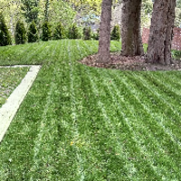 local-lawn-cutting-services-in-Mercer Island-WA