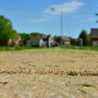 lawn-maintenance-in-Providence-RI