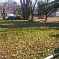 lawn-care-services-in-Bloomington-MN