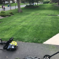 residential-lawn-cutting-businesses-in-Twin Cities-MN