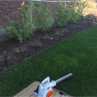 affordable-landscaping-maintenance-services-in-Solana Beach-CA