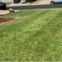 grass-cutting-businesses-in-Vista-CA