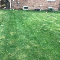 residential-lawn-cutting-businesses-in-Del Mar-CA