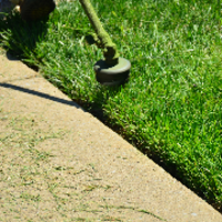 lawn-care-services-in-Abilene-TX