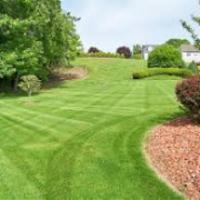 lawn-maintenance-in-Gary-IN
