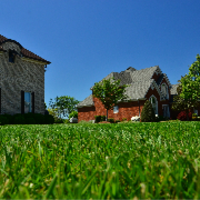 cheap-lawn-cutting-businesses-in-Harvey-IL