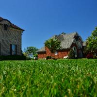 lawn-maintenance-in-Harvey-IL
