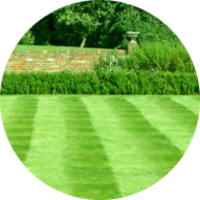 affordable-landscaping-maintenance-services-in-Worcester-MA