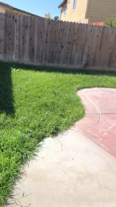 affordable-grass-cutting-businesses-in-Milpitas-CA