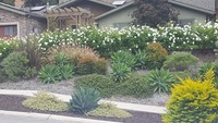 local-lawn-and-landscape-maintenance-services-near-me-in-Rancho Santa Margarita-CA