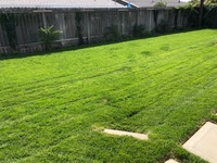local-lawn-and-landscape-maintenance-services-near-me-in-Tustin-CA