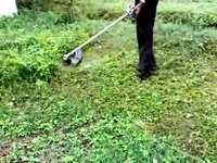 lawn-care-services-in-Norwalk-CA