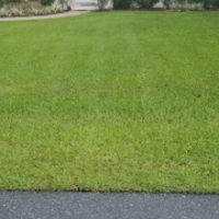 grass-cutting-businesses-in-The Villages-FL