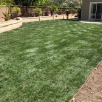 residential-lawn-cutting-businesses-in-Lemon Grove-CA