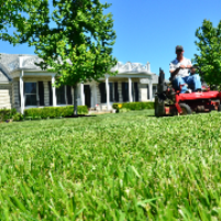 local-lawn-and-landscape-maintenance-services-near-me-in-Sherwood-Arkansas