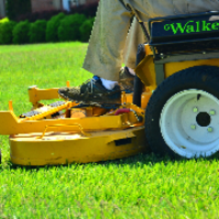cheap-lawn-cutting-businesses-in-Collierville-TN