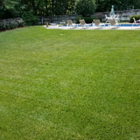 affordable-grass-cutting-businesses-in-Huntsville-AL