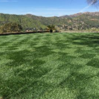 local-lawn-cutting-services-in-Mission Beach-CA