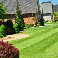 residential-lawn-cutting-businesses-in-Seattle-WA
