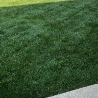 affordable-grass-cutting-businesses-in-Brookfield-WI