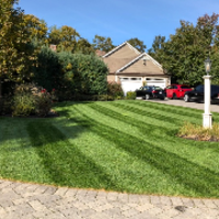 affordable-lawn-services-in-Boston-MA