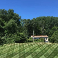 residential-lawn-cutting-businesses-in-Somerville-MA