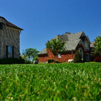 lawn-maintenance-in-Renton-WA