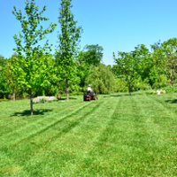 residential-lawn-cutting-businesses-in-Kirkland-WA