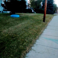 affordable-grass-cutting-businesses-in-Franklin-WI