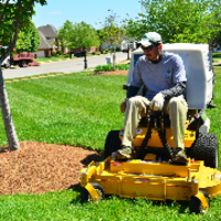 the-yard-cutting-businesses-in-Bayside-WI