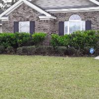 lawn-care-services-in-Savannah-GA