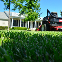 local-lawn-and-landscape-maintenance-services-near-me-in-Milford-CT