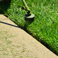 lawn-care-services-in-Brooklyn Park-MN