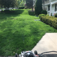 affordable-grass-cutting-businesses-in-Coon Rapids-MN