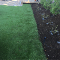 affordable-lawn-services-in-Vista-CA