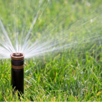 affordable-lawn-services-in-Santee-CA