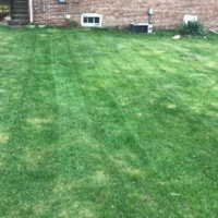 local-lawn-care-services-in-Spring Valley-CA