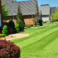 cheap-lawn-cutting-businesses-in-Sperry-OK