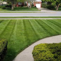 grass-cutting-businesses-in-Lincoln-NE