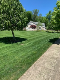 cheap-lawn-cutting-businesses-in-Edison-NJ