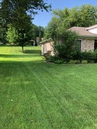 lawn-maintenance-in-Evansville-IN