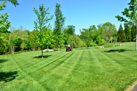 residential-lawn-cutting-businesses-in-Rancho Santa Margarita-CA