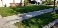 local-lawn-and-landscape-maintenance-services-near-me-in-Venice-California