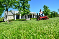local-lawn-and-landscape-maintenance-services-near-me-in-Redondo Beach-California